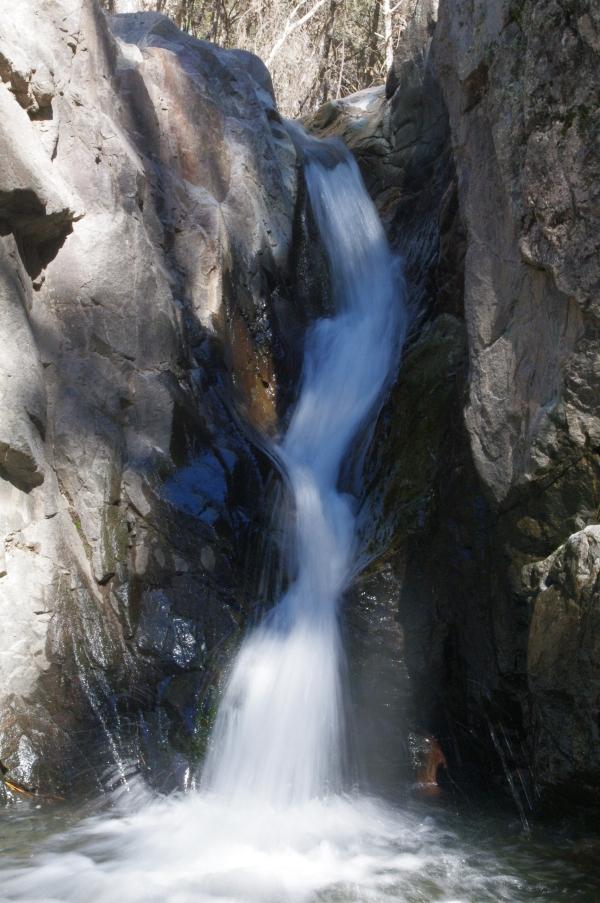 Turkey Creek take 2 050